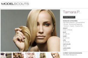 free modeling portfolios